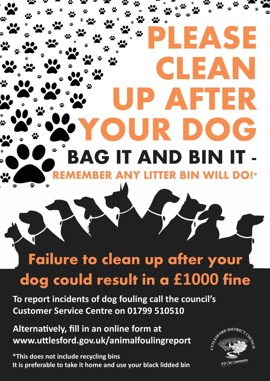 bin it poster_Layout 1